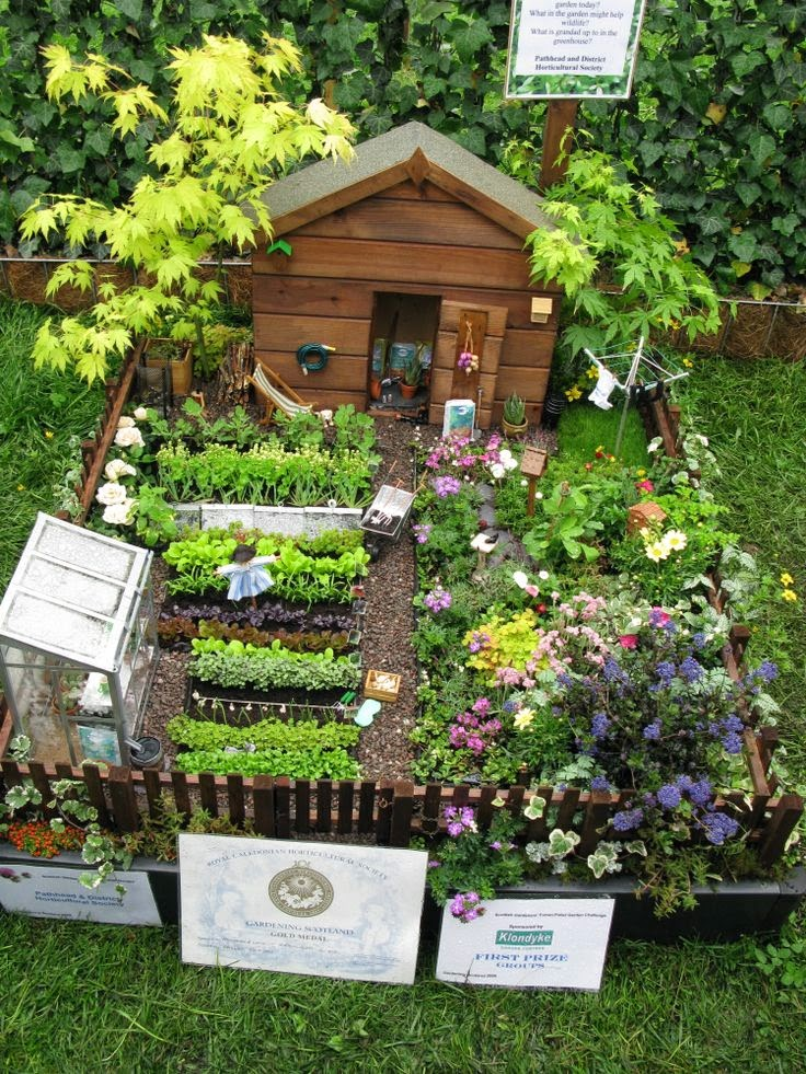 jardin hadas 5