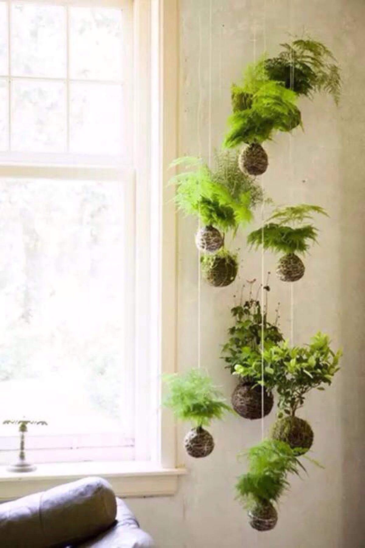 jardin vertical 17
