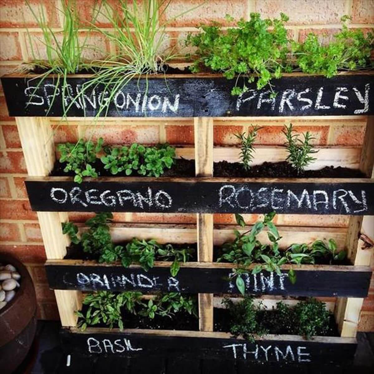 originales y creativos jardines hierbas 2