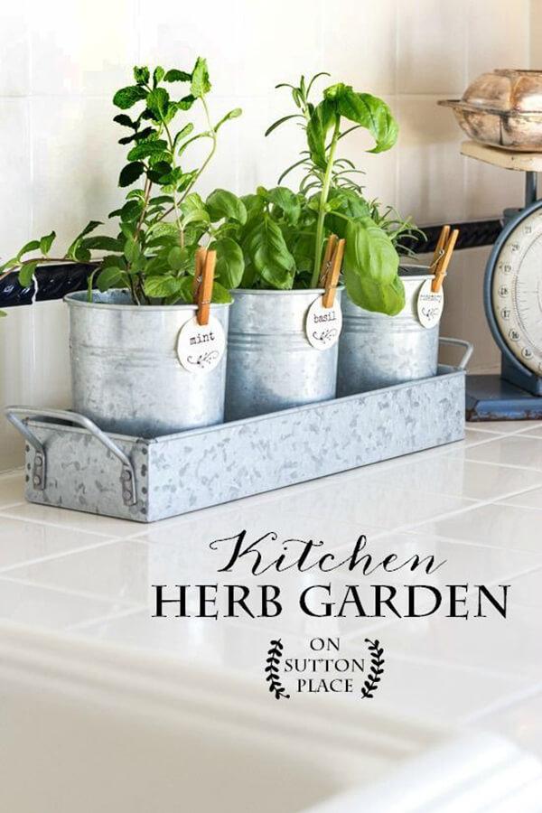 originales y creativos jardines hierbas 7