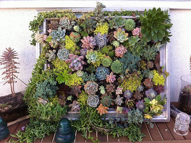 contenedores jardin reutilizados 15