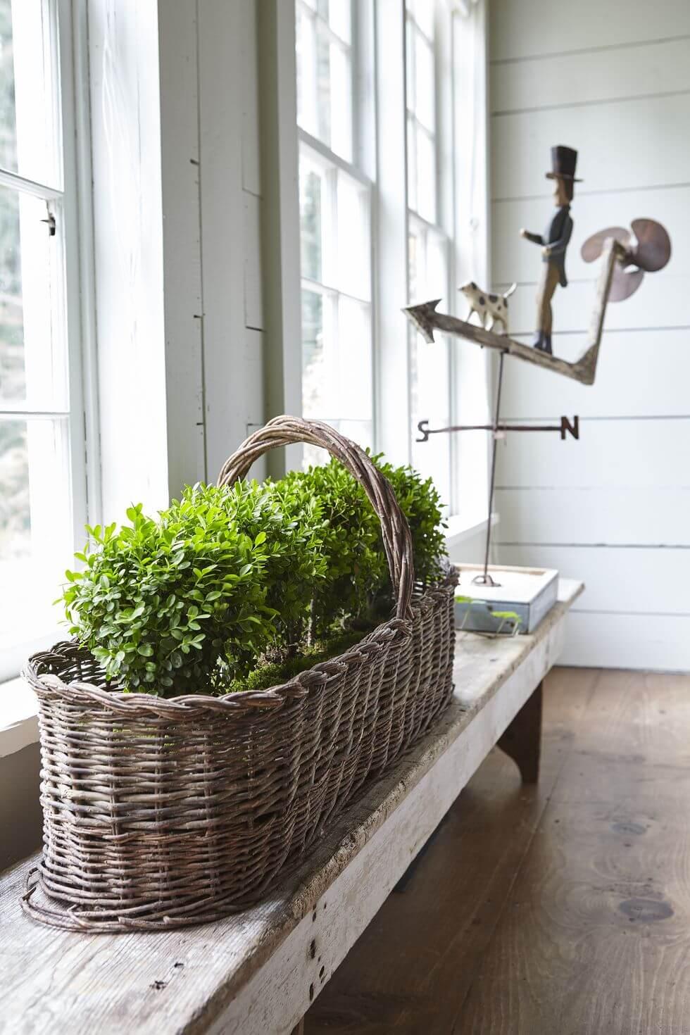 decor plantas estilo granja 25