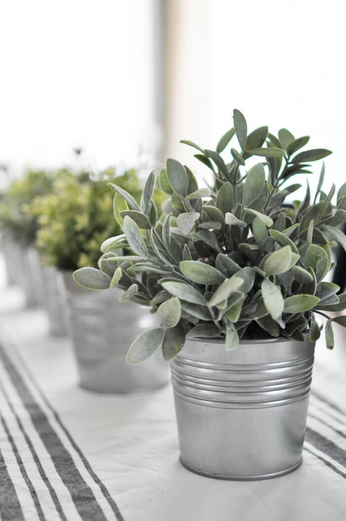 decor plantas estilo granja 29