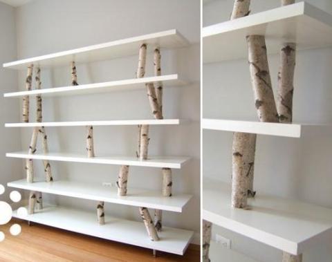 madera de abedul 20