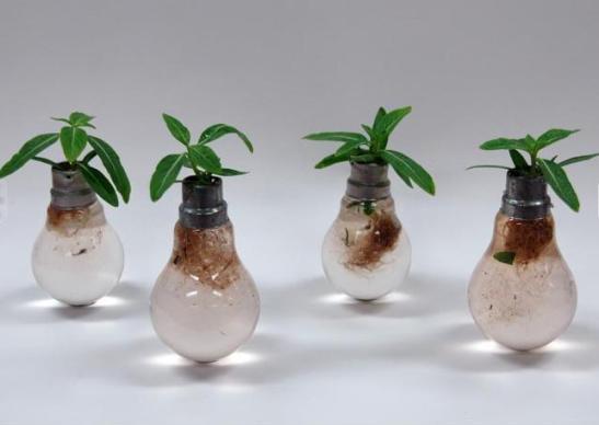 Ideas Originales para el Reciclaje de Bombillas Tradicionales