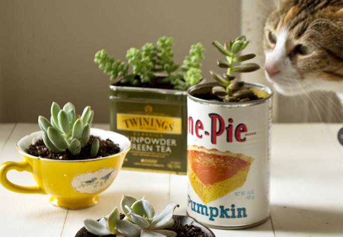 reciclar y decorar con latas 14
