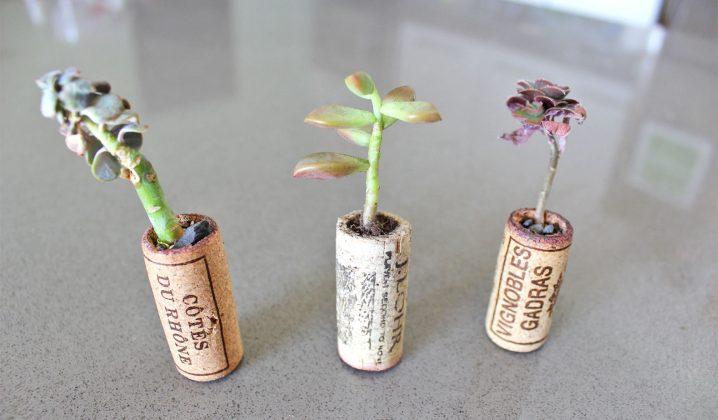Proyectos Decorativos Para Tu Hogar con Reciclaje