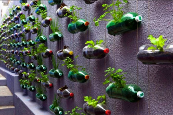 Maceteros Creativos con Botellas Recicladas