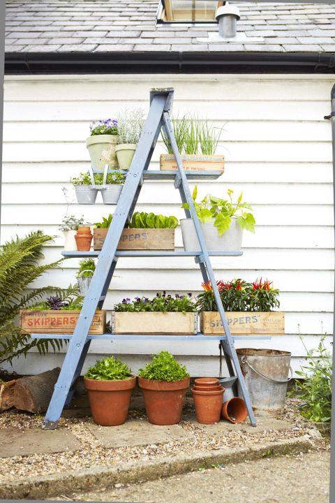 Alternativas del Soporte de Plantas para su Patio Trasero
